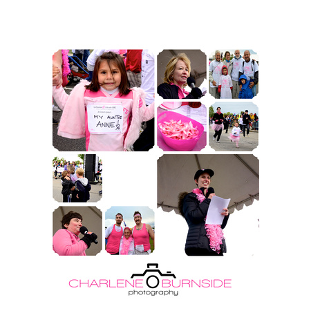 2011 Run for the Cure